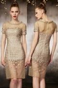 Gorgeous Organza Column Champagne Knee Length Evening Dress