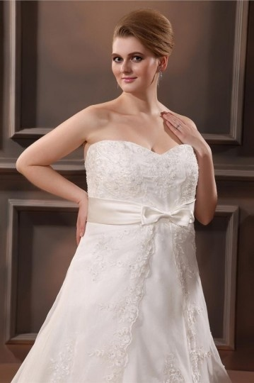 Organza Applique Sweetheart Plus Size Wedding Dresses Wbcc1593