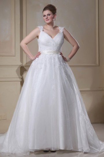 Applique Beading Organza V Neck Court Plus Size Bridal Gown