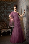 Tulle Trumpet One Shoulder Long Pleated Mother Dress with Lace Appliques