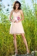 Spaghetti Straps Chiffon Short Pink Formal Bridesmaid Dress