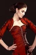 Half Sleeves Taffeta Red Wrap
