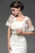 Transparent Short Sleeves Lace Wrap