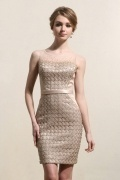 Bateau Sheer Lace Sheath Champagne Cocktail Dress