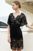 Elegant Lace V Neck Sheath Black Formal Gown