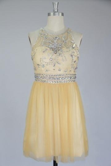 Jolie robe plissée à dos transparent en tulle